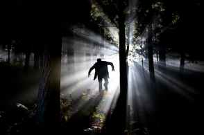 silhouette of man running on forest